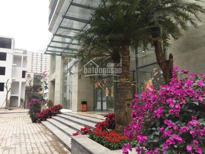 Bảng hàng ngoại giao CĐT tầng 12 - 15- 18 tại Thống Nhất Complex. Chiết khấu sâu