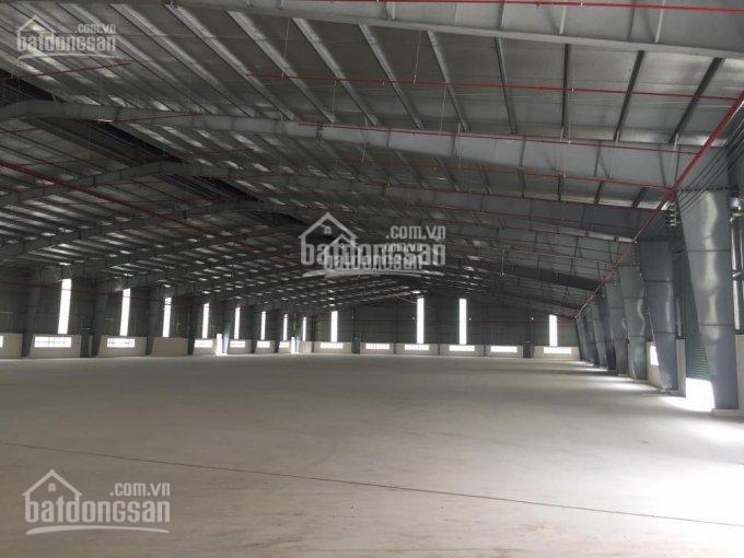 Cho thuê xưởng MT đường Trần Đại Nghĩa, Bình Chánh, DT 12.000m2