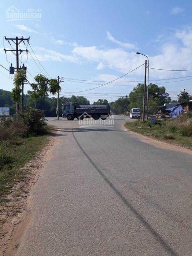 Cho thuê đất trống đường 53 Phạm Văn Chiêu quận Gò Vấp, DT: 1.600m2, đường xe tải, giá 40tr/th ảnh 0
