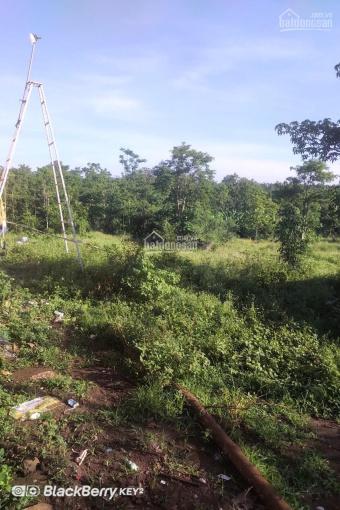 Đất trang trại , chăn nuôi 8245m2 giá 1,479tỷ