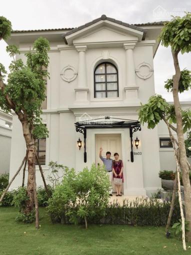 Tôi Sơn cần bán gấp căn biệt thự 2 PN Vinpearl Đà Nẵng 16,5 tỷ, cho thuê 1,3 tỷ/ năm ~ 109tr/th