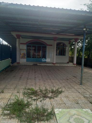 Cần bán nhà và 11 phòng trọ mặt tiền đường Bàu Tre - xã Tân An Hội - Củ Chi