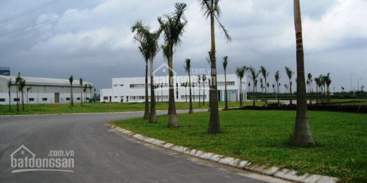 Bán đất khu công nghiệp VSIP Bắc Ninh, quy mô 2ha, hỗ trợ thi công nhà xưởng theo yêu cầu.