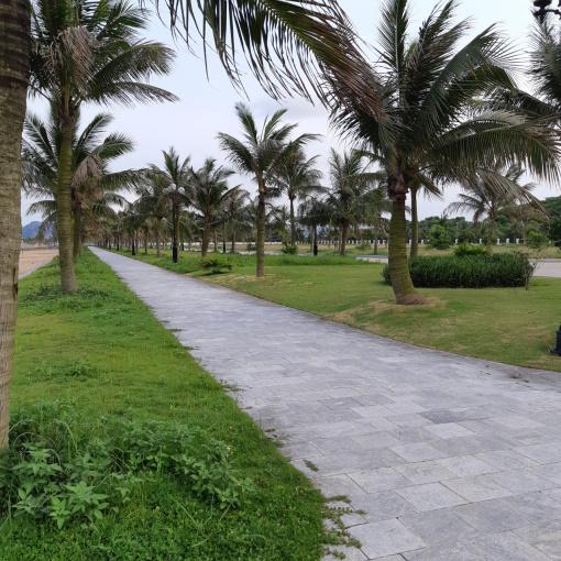 Bán đất LK dự án Đảo Ngọc Tuần Châu hot nhất thời điểm hiện tại giá 3x triệu/m2 ảnh 0