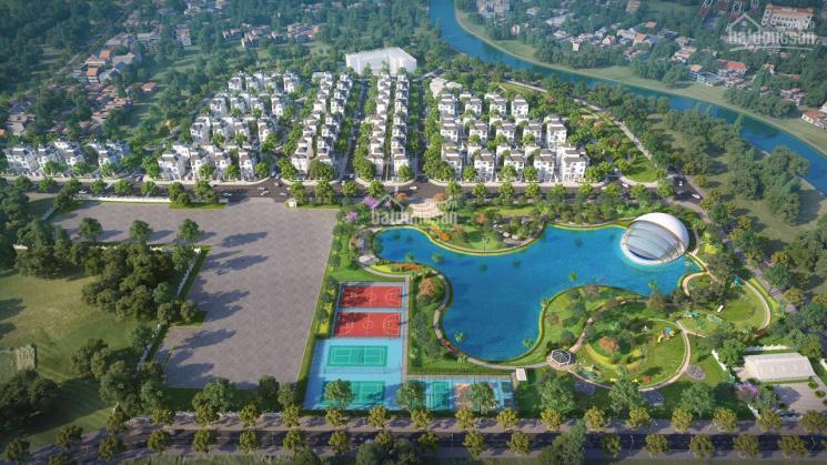 Bán suất ngoại giao biệt thự Vinhomes Green Villas Tây Mỗ, Giá Trực Tiếp CĐT LH 0981702838