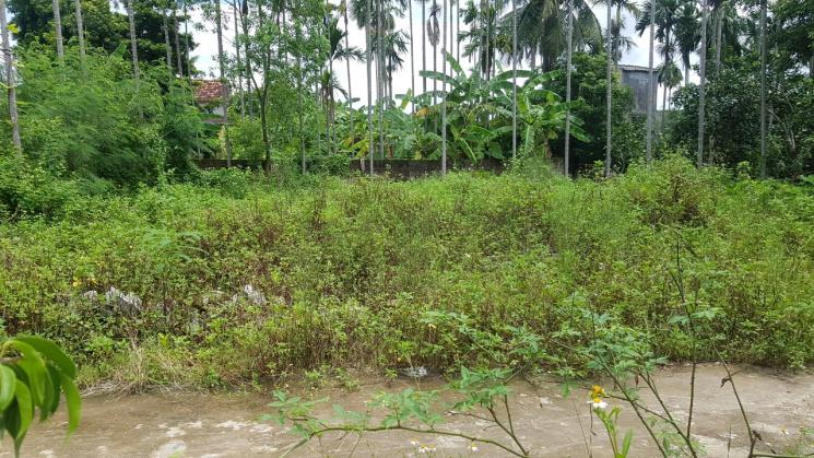 Bán lô đất trung tâm xã Lâm Động - Thủy Nguyên mặt tiền lên tới 7,5m - LH: 0382133428