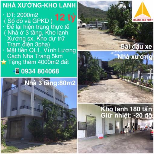 Chính chủ cần bán kho lạnh kèm nhà xưởng mặt tiền quốc lộ 1A Vĩnh Lương, tặng 4000m2 đất.