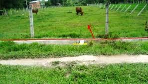 Cần bán 5 sào và 5 lô đất mặt tiền đường sát bên khu công nghiệp 560tr 1 sào 490tr 1 lô