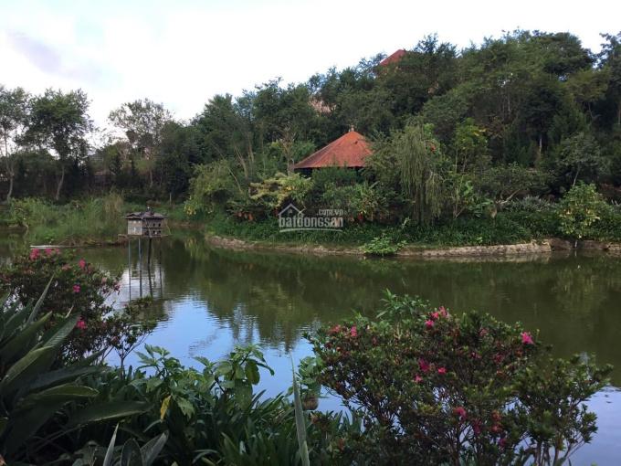 Bán nhà biệt thự sân vườn giữa lòng TP. Đà Lạt, Tỉnh Lâm Đồng, DT: 10500m2 giá: 96 tỷ (TL)