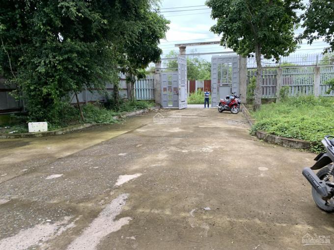 Cho thuê kho xưởng mặt tiền đường 6 tấn cách QL50 khoảng 400m, Phong Phú, Bình Chánh, Hồ Chí Minh