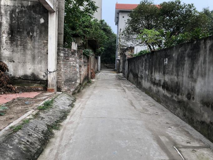 Bán đất chân cầu Nhật Tân, Đông Anh, cách phố 100m đường rộng ô tô vào nhà