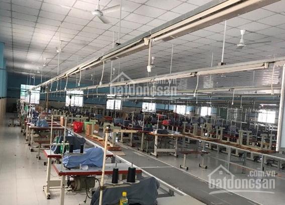 Cần mua xưởng khu vực Bến Cát, Tân Định