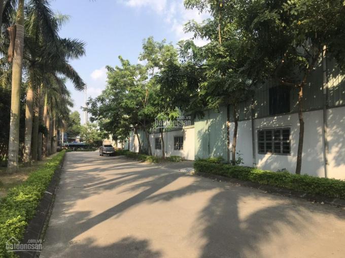 Cho thuê kho xưởng DT: 1000m2, 3000m2, 5000m2 tại CCN Hà Bình Phương, Thường Tín. LH: 0903425299 ảnh 0
