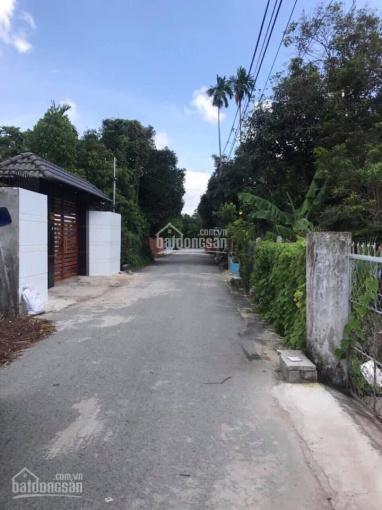 Bán 980m2 đất vườn thích hợp xây nhà vườn nghỉ dưỡng tại Hưng Định 10, Thuận An, Bình Dương