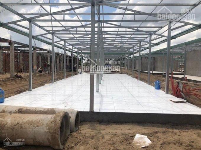 Bán 2 lô đất kế bên khu trung tâm thương mại - Cosmart - Đức Hòa - SHR chỉ 7,6tr/m2