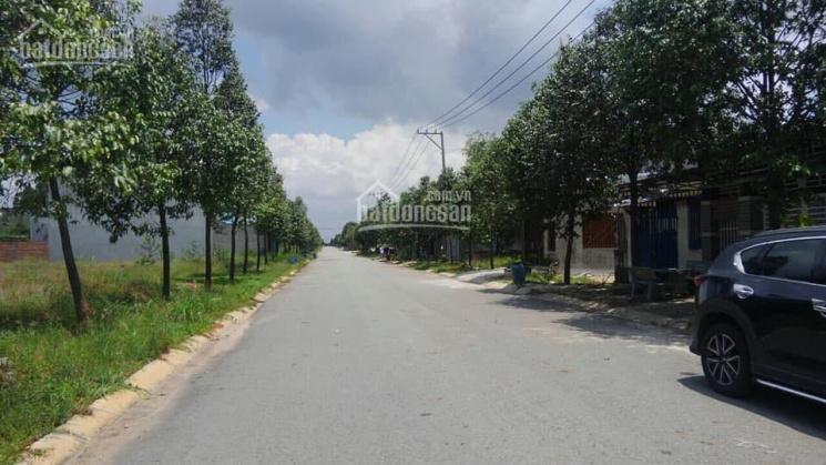 Thu mua lô F9, lô F10, lô F11, lô F12 đất Mỹ Phước 3 tại thị xã Bến Cát với giá cao