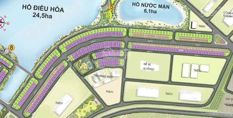 Quỹ căn độc quyền khu Hải Âu, Sao Biển, San Hô, shop đế chung cư, TMDV Vinhomes Ocean Park Hà Nội