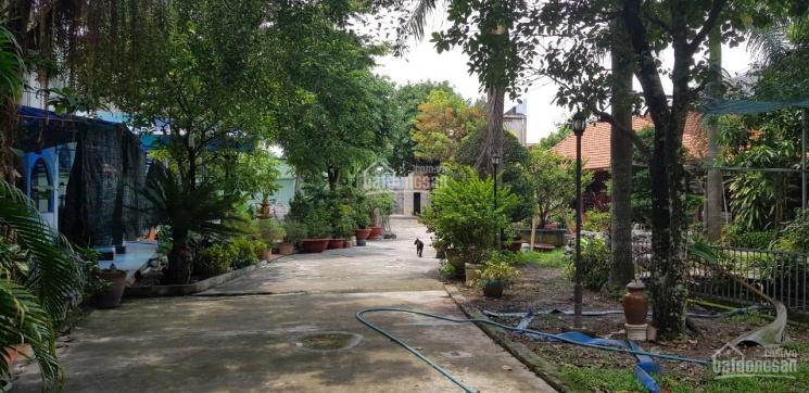 Biệt thự vườn mặt tiền đường Phan Đăng Lưu, Thủ Dầu Một, Bình Dương