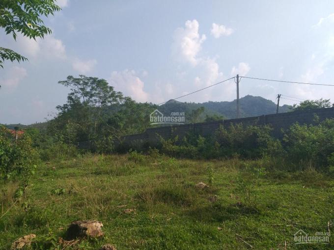Cần chuyển nhượng lô đất 2160m2 đã xây dựng tường bao xung quanh view cánh đồng tại Yên Bài, Ba Vì