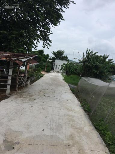Bán đất chính chủ diện tích 80x80m=6161m2 có 100m2 thổ cư tại xã Phước Vĩnh An Huyện Củ Chi