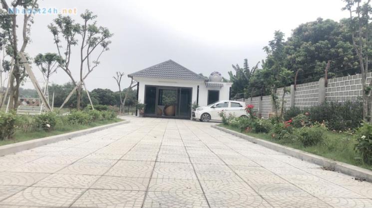 Chính chủ cần bán 1,060m2 đất sổ đỏ có 80m2 đất xây dựng nhà ở nông thôn tại xã Nhuận Trạch