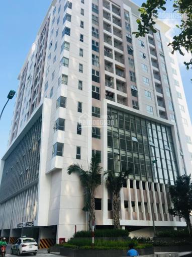 Cho thuê căn hộ văn phòng Quận 7, thoải mái 24/24h làm việc, được lưu trú. Liên hệ: 0909965948