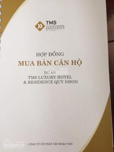 TMS - 28 Nguyễn Huệ (Quy Nhơn) cần bán căn hộ 01 view trực diện biển ôm cua góc giá đầu tư
