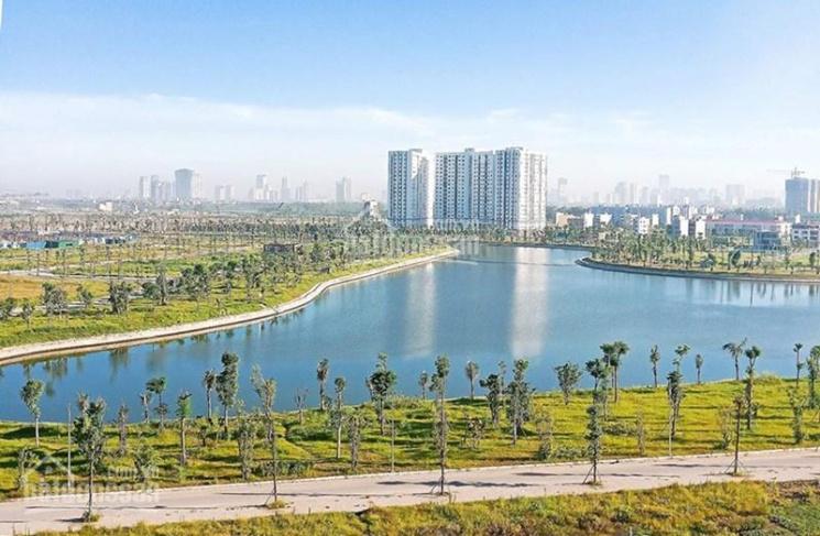 Bán đất biệt thự Thanh Hà Mường Thanh Cienco 5 giá sốc. LH 0977503198