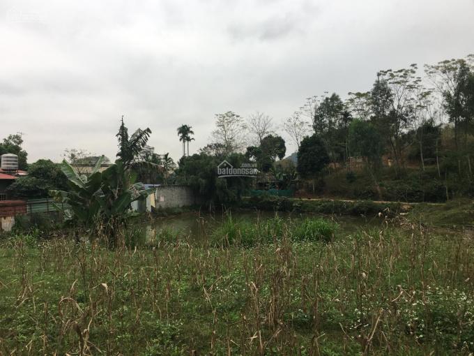 Cần bán gấp 1818m2 đất ở giá rẻ, làm trang trại nhà vườn sinh thái, xã Phú Mãn, Quốc Oai, Hà Nội