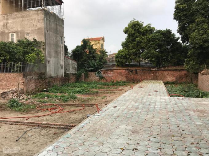 Chính chủ cần bán gấp 55m2 đất ở Viên Ngoại, Đặng Xá, Gia Lâm, Hà Nội, đất sổ đỏ chính chủ