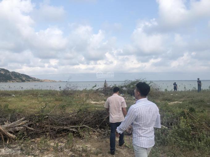 Chính chủ cần bán lô đất mặt biển ĐT 702 Vĩnh Hải, Ninh Hải, Ninh Thuận. Giá đầu tư LH 0838906666 ảnh 0