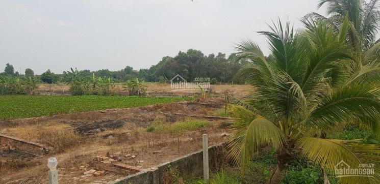 Bán lô đất mặt tiền đường Võ Văn Bích, X Bình Mỹ, DT 10567m2. Giá 5.5 triệu/m2, gần TP Thủ Dầu Một ảnh 0