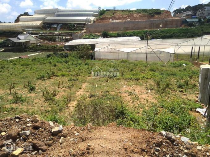 Cần bán gấp đất 2 mặt tiền Đa Phú, 40m mặt tiền đường chính, giá 12tr/m2. Có bán lẻ từng lô