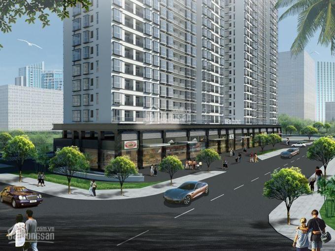 Mở bán căn hộ Terra Mia ngay khu tiếp giáp Trung Sơn, đối diện ĐH Rmit 0918.45.55.25 - 0988.578.297