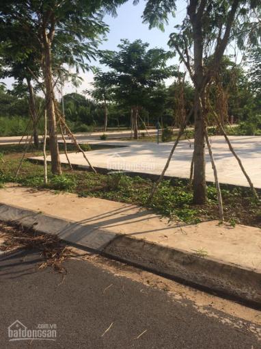 Cần bán lô đất 2 mặt tiền đường 10m và 7m cách đường Lê Văn Lương 30m. DT: 110m2, giá 34tr/m2 ảnh 0