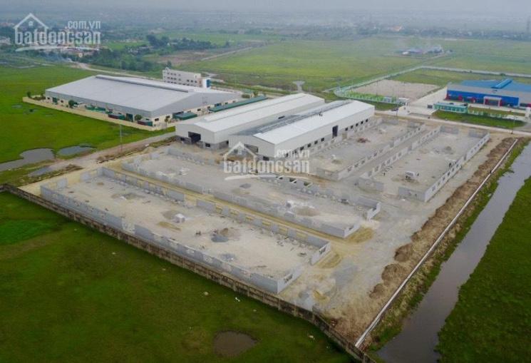 Sang nhượng 7 ha đất 50 năm sổ đỏ May Nam Định