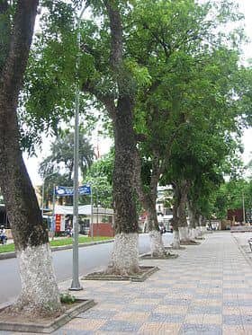 Bán gấp nhà 4 tầng rẻ nhất mặt phố Kim Mã Thượng, diện tích 58,1m2, giá 210tr/m2. LH 0984701066