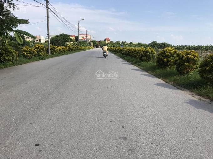 Bán đất làng nghề Kiêu Kỵ diện tích 200 - 2000m2, đường 15m. LH: 03.3861.1368