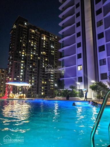 Cho thuê căn hộ 1 + 1 phòng ngủ The Zen Gamuda 55m2, 6 triệu miễn phí bể bơi tập gym