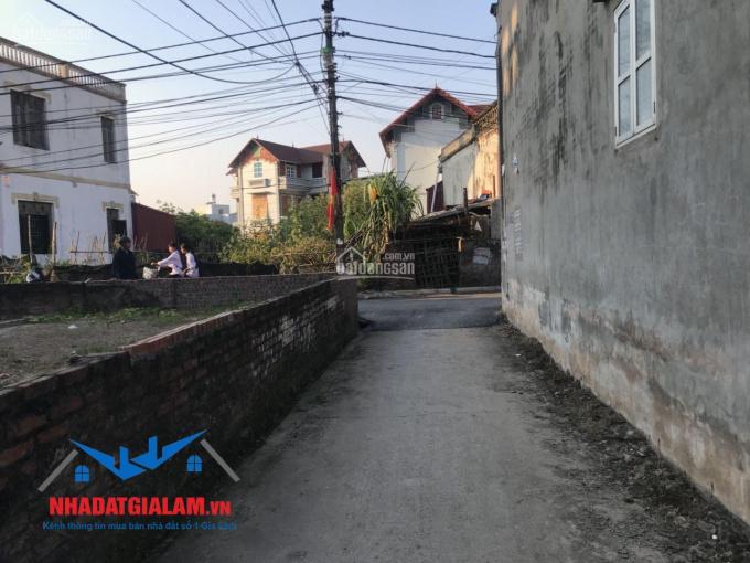 Bán gấp 50.5m2 đất xóm 3, ngay trung tâm xã Đông Dư, Gia Lâm. LH 097.141.3456