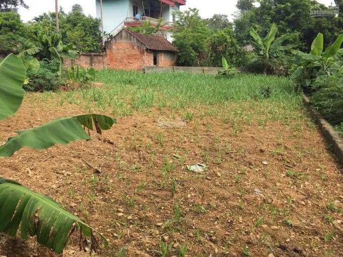 Bán 1300m2 đất xã Yên Bình, Thạch Thất, Hà Nội, đầu tư quá tốt. LH 0973378150