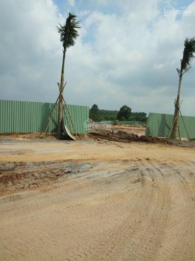 Đất sân bay Long Thành, Đồng Nai, giá rẻ