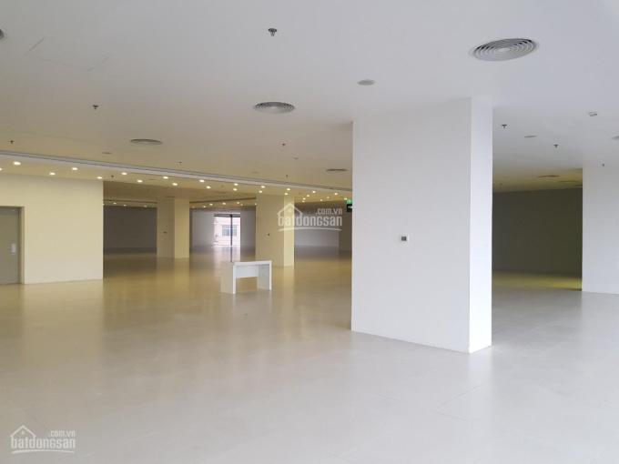 Mặt bằng cho thuê thương mại làm văn phòng Artemis 03 Lê Trọng Tấn, Quận Thanh Xuân, HN, vị trí đẹp