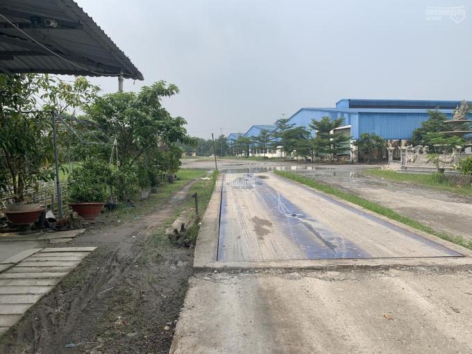 Bán nhà xưởng mặt tiền đường DT 744 (86.772m2 = 100% SKC, Xã Phú An, Bến Cát, Bình Dương