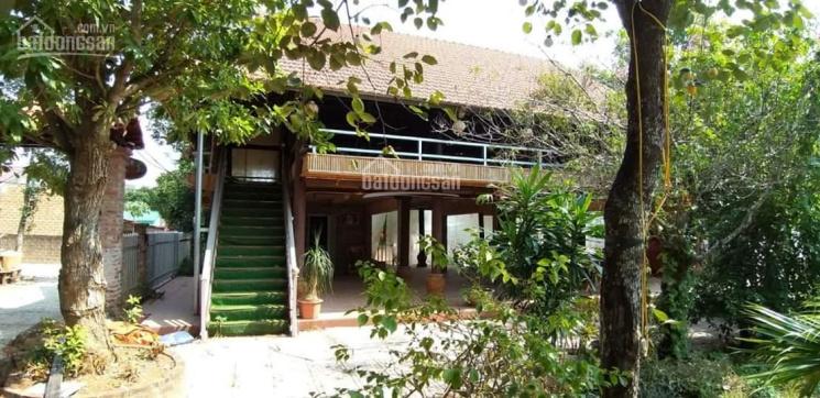 Hàng hiếm: Nhà hàng, biệt thự - Sài Gòn phố xưa trong lòng khu CNC Hòa Lạc