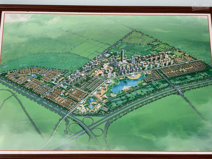 Chính chủ cần bán biệt thự Nam An Khánh Hoài Đức Hà Nội diện tích 500m2 - 600m2, giá đất 35 tr/m2 ảnh 0