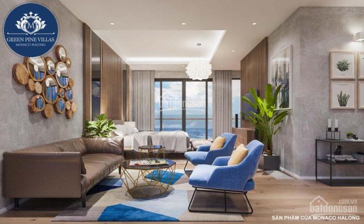 Chính chủ cần bán biệt thự view biển Hạ Long, bể bơi 40m2, rộng 702m2, giá 5.05 tỷ, nhận nhà 4 tầng