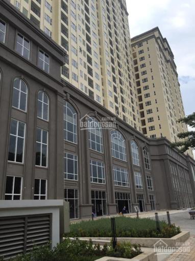 Cho thuê căn hộ Sài Gòn Mia 76m2, 2PN 3PN, giá 13 triệu/th, Ms Viêm 0938971212