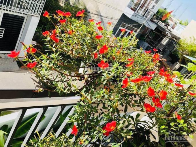 Cho thuê khách sạn 12 phòng giá 25 triệu/th khu phố tây hẻm Quân Trấn, Hùng Vương, Nha Trang