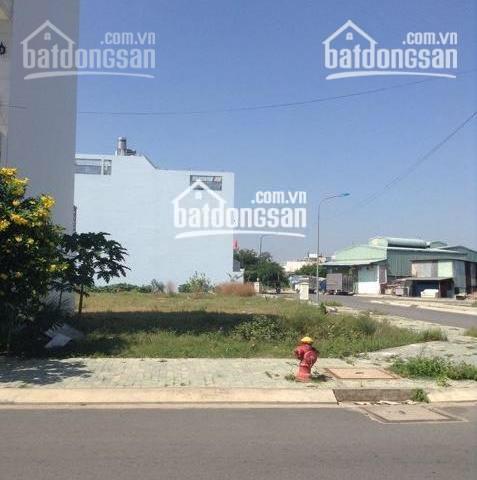 Bán lô đất MT chợ Đại Phước, Nhơn Trạch, thổ cư, CSHT hoàn thiện, 1,3 tỷ/100m2, 0867087204 thổ cư ảnh 0